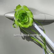 Зеленая розочка