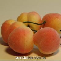 Персик большой, 3,5 см