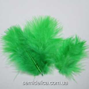 Перья пушистые 6-10 см, зеленый